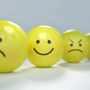 Onnellisuuden Paradokseja (1/2 Pv)